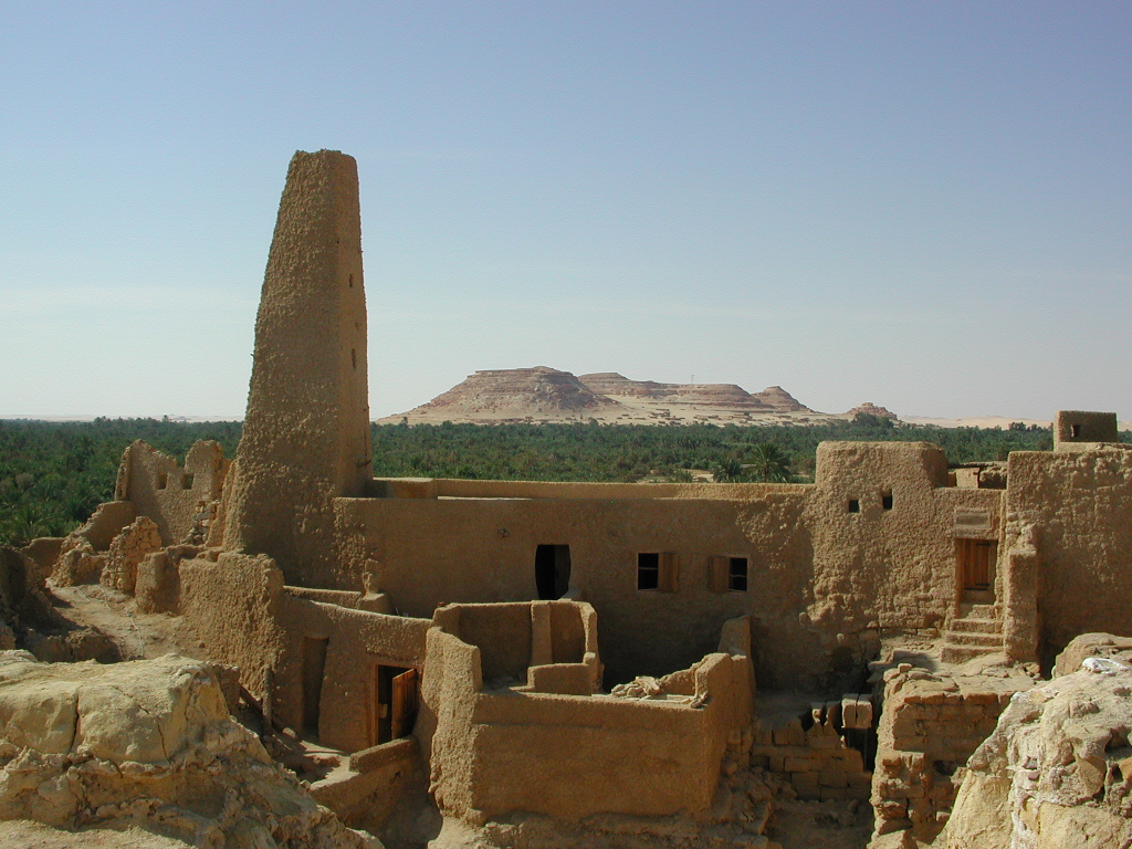 Oases In Egypt Travel Guide Information About Egypt 1024x768 Jpeg
