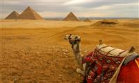Cairo Day Tour to Pyramids with Felucca Trip