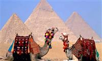 Day Tour to Cairo By Flight