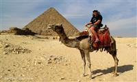 Day Trip to Cairo Pyramids & Safari at Sakkara from Port Said