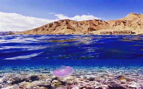 Desert Safari in Dahab & Snorkeling at Blue Hole Spot from Sharm