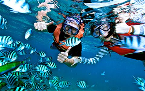Sharm Excursions & Day Tours