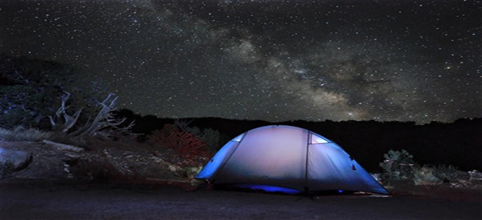 star gazer night sharm el sheikh